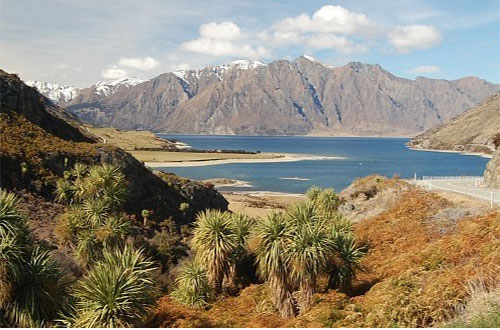 Fine Tours New Zealand things to do in Wanaka