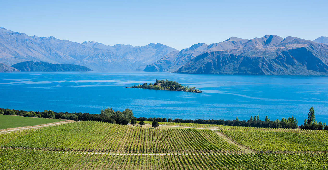 Wanaka Wine Tours Central Otago New Zealand wine tasting